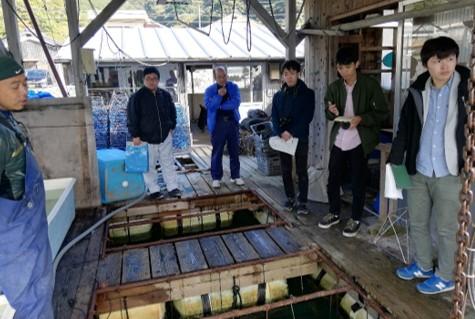 愛媛県の養殖場で行ったアコヤガイ大量死の調査