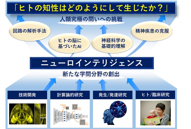 IRCN説明画像.png