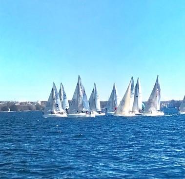 海上に浮かぶ複数のヨット